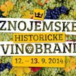 ZHV2014_logo