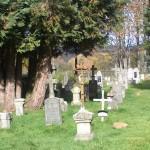 hřbitov - hřbitov Bučina