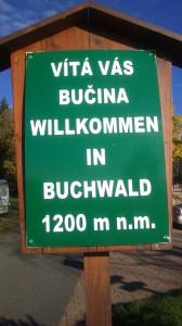 vítá vás Bučina