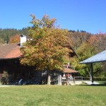 zdařilá rekonstrukce chalup - skanzen Firstenau
