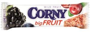 Corny big Fruit apple TYCINKA v05 OUTLINES