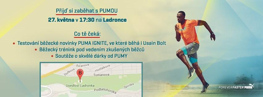 PUMA_IGNITE_Run_Ladronka