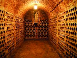 int_hist sklepeni_TSC_11_koje archivni vina