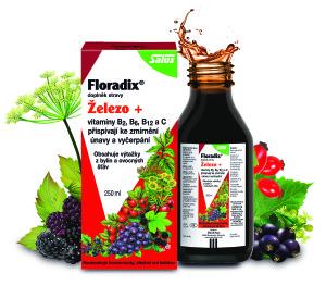 Floradix_Zelezo_+_s_ovocem