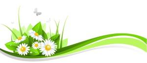 image Liftea bylinky