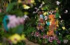 Botanická zahrada zahájila výstavu orchidejí ve skleníku Fata Morgana