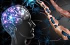 Roztroušená skleróza v historii a dnes