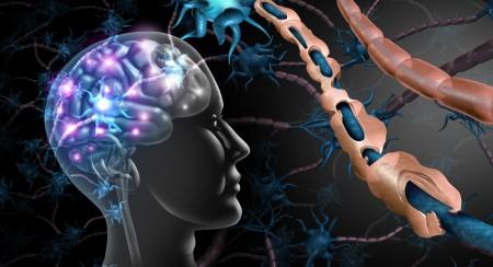 Poškozený_nerv_v_centrálním_nervovém_systému