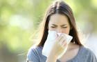 Jídlo může prozradit, na co máte alergii!
