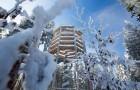 ZRUŠENO! Pozvánka na tradiční novoroční výstup na Stezku korunami stromů Lipno se soutěží o skipasy