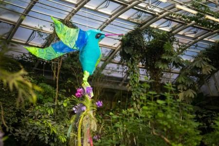 Výstava_orchidejí_Miniatury_a_giganti_Ekvádoru_2021