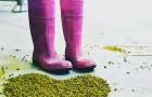 Plzeňský minipivovar Proud v rámci Pink Boots Collaboration Brew Day 8. března uvaří speciální várku piva Hazy IPA