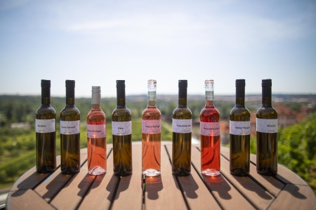 portfolio vína