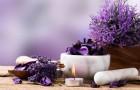 Bylinné tipy pro podporu krásy, kondice i dobré nálady